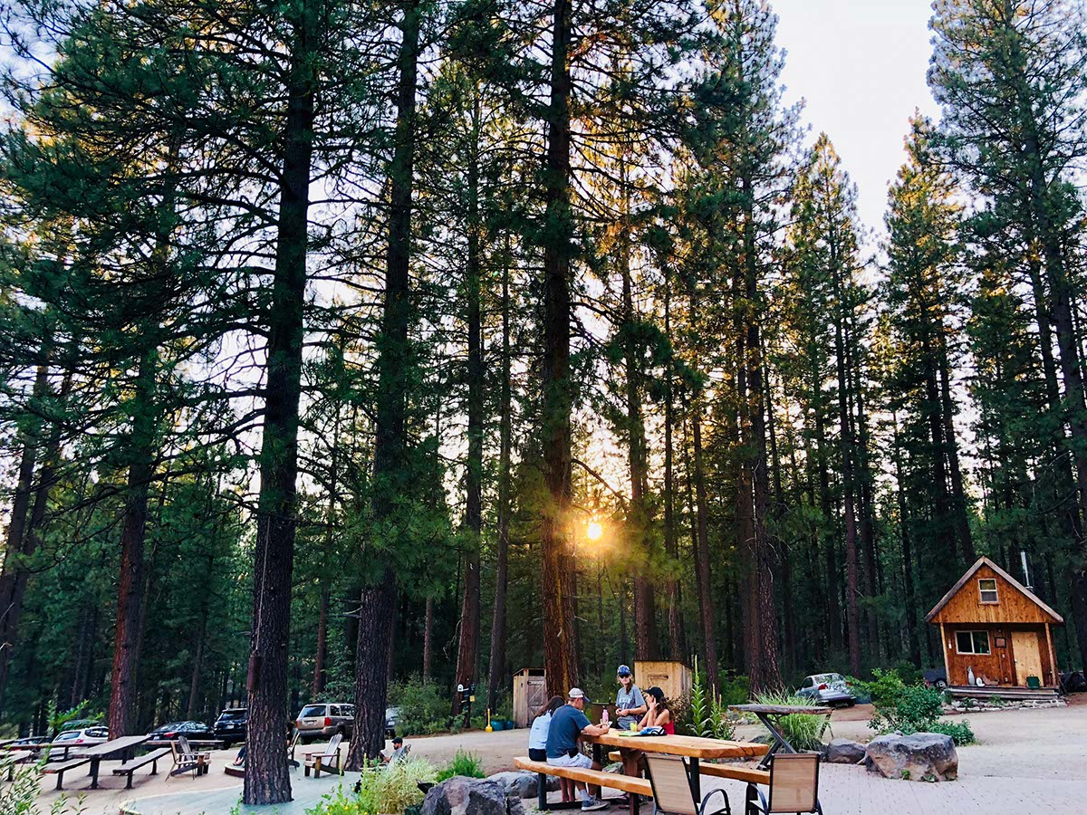 Enjoying the sunset at a picnic table amongst the tall trees