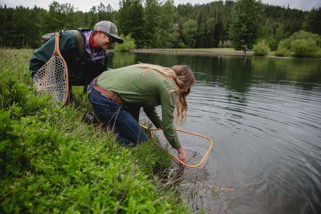 Netting a fish at the lake at Greenhorn Ranch
