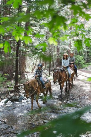 A group of people horseback riding through the woods at Greenhorn Ranch