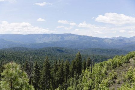 The beautiful view across the valley of pine trees from a horseback trail at Greenhorn Ranch