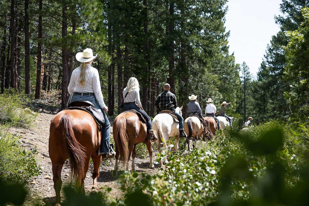 A group horseback ride through the forest at Greenhorn Ranch