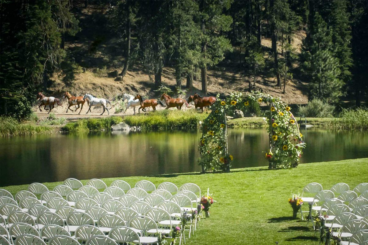 Chairs set up for the guests at a rustic, lake-side wedding at Greenhorn Ranch