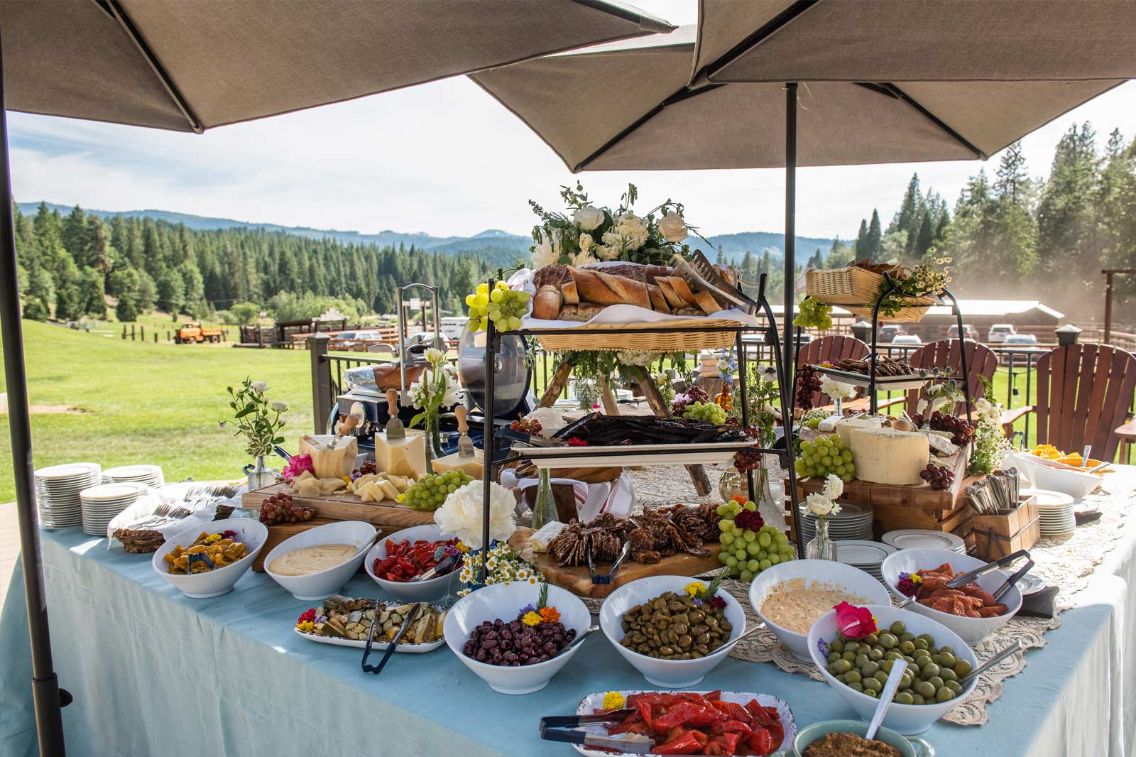 Tables offering a large assortment of food, outside at a private event at Greenhorn