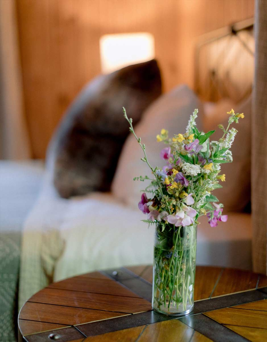 close up of vase of flowers with out of focus bed in background