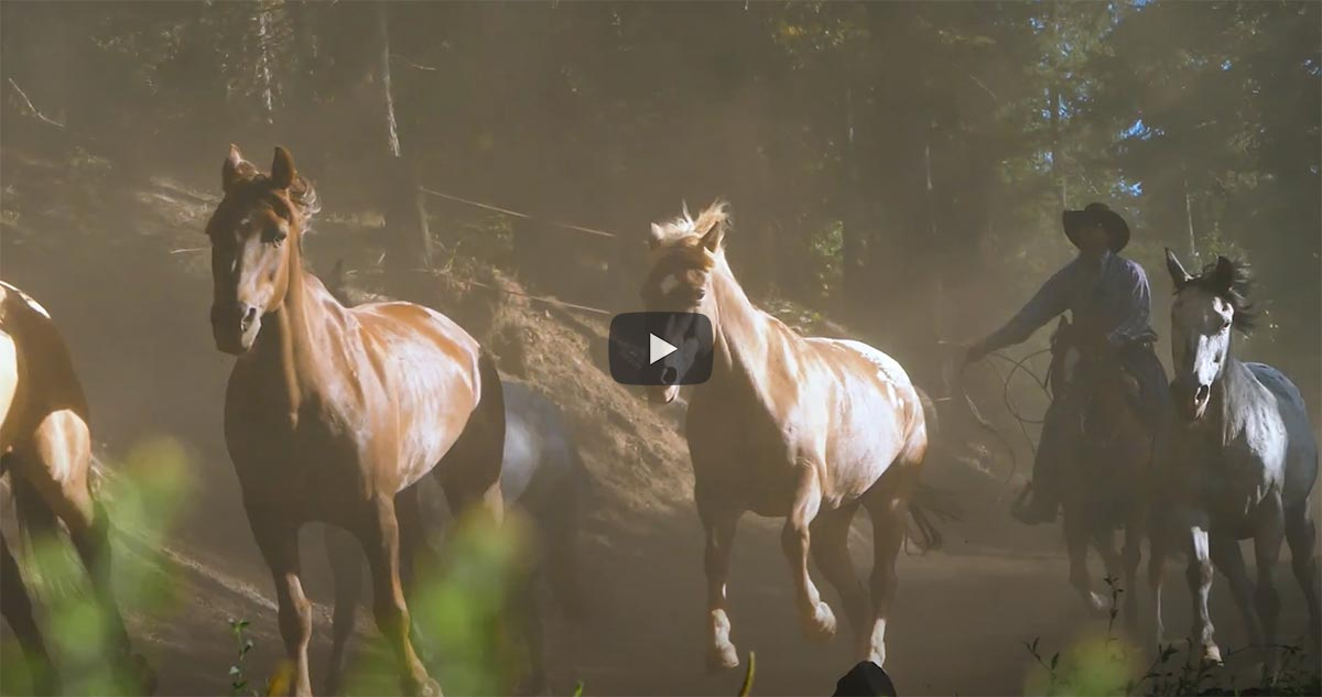 Video Poster from Debbe Dunning's Dude Ranch RoundUp showing the Greenhorn Ranch